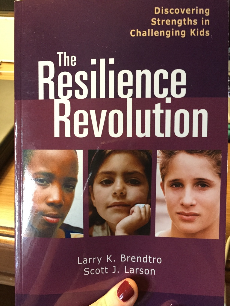 The Resilience Revolution: Discovering the Strengths in Challenging Kids