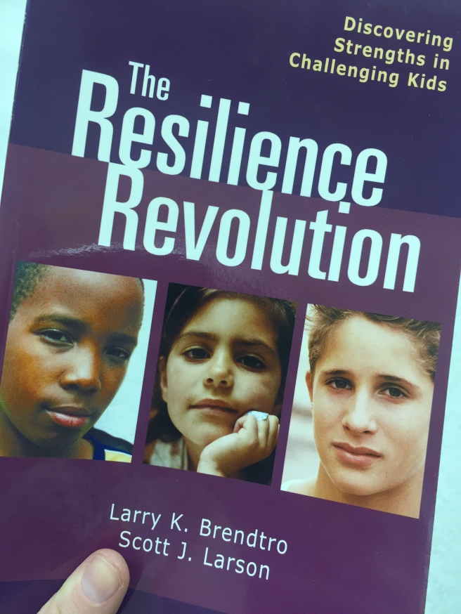 The Resilience Revolution: Discovering Strengths in Challenging Kids