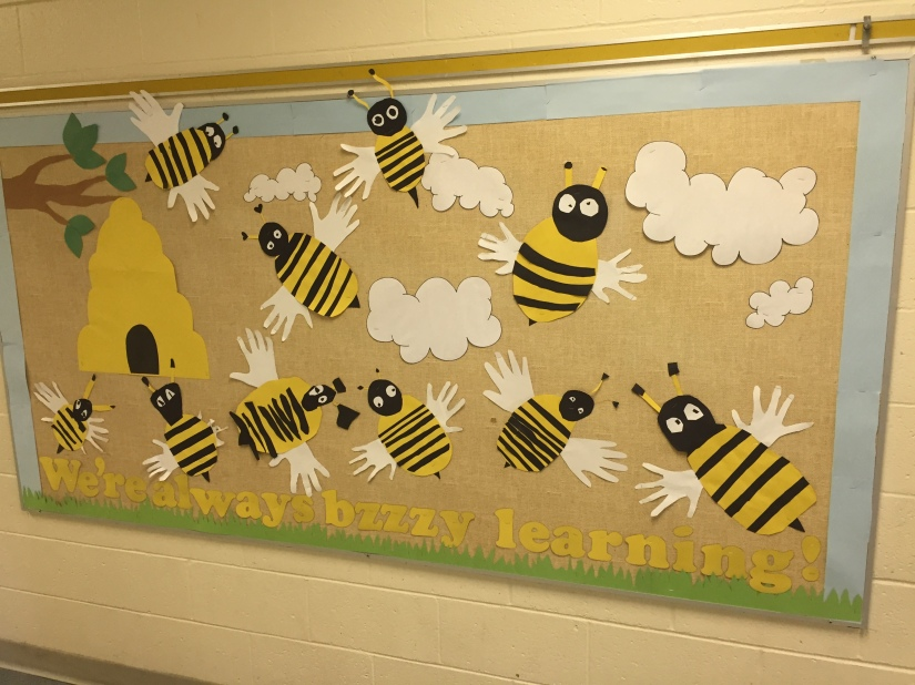 Our finished bulletin board!
